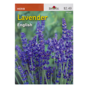 Burpee Seeds, True Lavender