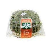 Kowalke Organics Organic Spicy Blend Sprouts