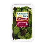 Earthbound Farms Organic Baby Romaine Salad