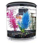 Imagitarium 2 Gallon Cumberland Freshwater Aquarium