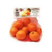 Sundance Natural Foods Co. Organic Minneola Tangerines