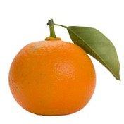 Organic Bitter Orange