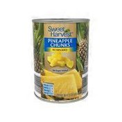 Sweet Harvest Pineapple Chunks In 100% Juice