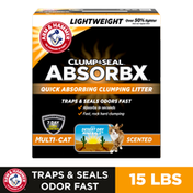 Arm & Hammer Clump & Seal Absorbx Clumping Cat Litter, Multicat Scented