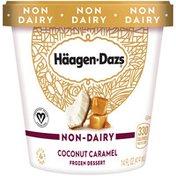 Haagen-Dazs Non Dairy Coconut Caramel Frozen Dessert