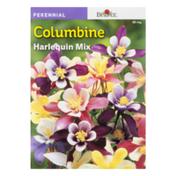 SB Columbine Harlequin Mix
