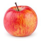 Bag of Macintosh Apples