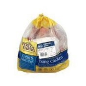 Foster Farms Fresh & Natural Young Chicken
