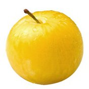 Yellow Plum Package