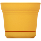 Bloem Planter, Saturn Earthy Yellow, 5 Inches