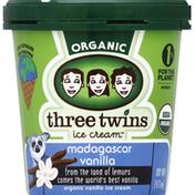 Three Twins Ice Cream, Organic, Madagascar Vanilla