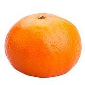 Sunburst Tangerine Box
