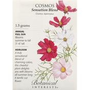 Botanical Interests Seeds, Cosmos, Sensation Blend