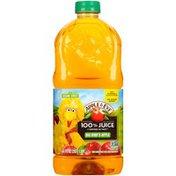 Apple & Eve Big Bird's Apple 100% Juice