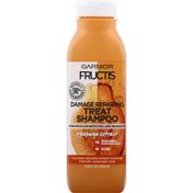 Garnier Treat Shampoo with Papaya Extract