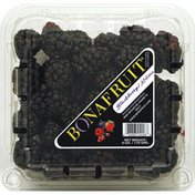 Belmont Northgate Gonzalez  Blackberries