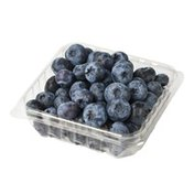Sunnyridge Organic Blueberries