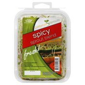 California Sprouts Sprout Blend, Spicy