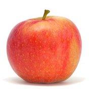 Cripps Red (Sundowner) Apple