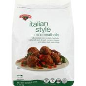 Hannaford Mini Style Italian Meatballs