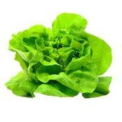 Green Leaf Lettuce Box