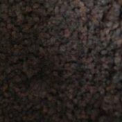 Currant Raisins