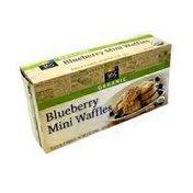 365 Everyday Value Organic Blueberry Mini Waffles
