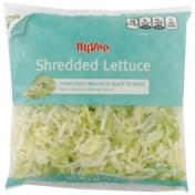 Hy-Vee Fancy Shredded Iceberg Lettuce