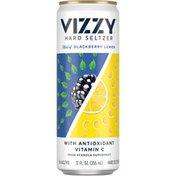 Vizzy Hard Seltzer Blackberry Lemon Beer