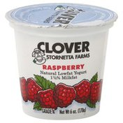 Clover Yogurt, Lowfat, Raspberry