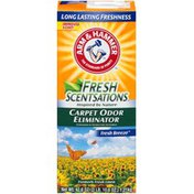 Arm & Hammer Fresh Scentsations Fresh Breeze Carpet Odor Eliminator