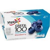 Yoplait Greek 100 Calories Blueberry Fat Free Yogurt