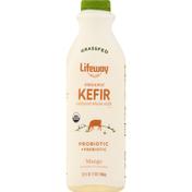 Lifeway Kefir, Organic, Mango