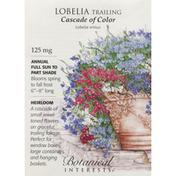 Botanical Interests Seeds, Lobelia Trailing, Cascade of Color