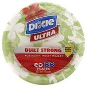 Dixie Plates, 6-7/8 Inch
