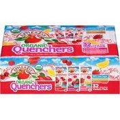 Apple & Eve Organic Quenchers Fruit Punch Burst/Razzberry Apple Splash/Berrylicious Lemonade Variety Pack Juice Beverage