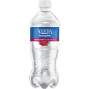 Aquafina Flavorsplash Really Raspberry
