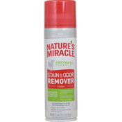 Nature's Miracle Stain & Odor Remover Foam, Dog, Enzymatic Formula