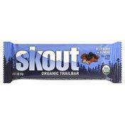 Skout Trailbar, Organic, Blueberry + Almond