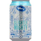 Dogfish Head Slightly Mighty Lo-Cal IPA Beer