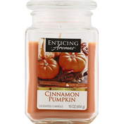 Enticing Aromas Scented Candle, Soy Blend, Cinnamon Pumpkin
