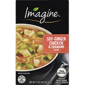 Imagine Soup, Soy-Ginger Chicken & Edamame