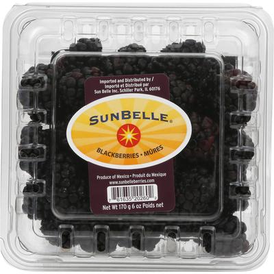 Sunbelle Blackberries
