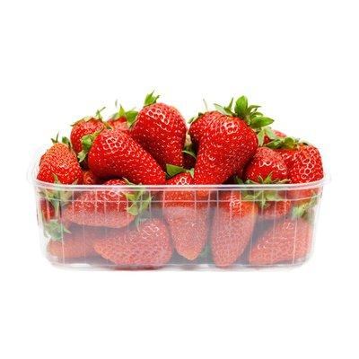 Expo Fresh Strawberries