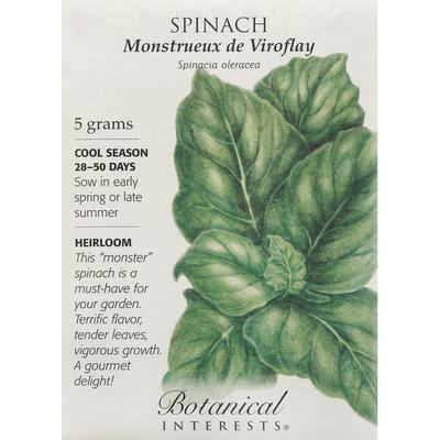 Botanical Interests Seeds, Spinach, Monstrueux de Viroflay