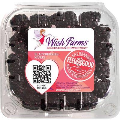 Wish Farms Blackberries