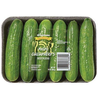 Mini Seedess Cucumber