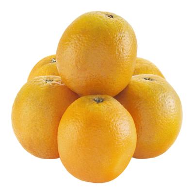 Florida Oranges, Bag