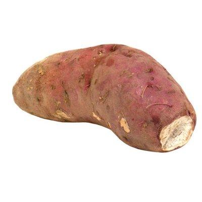 Boniato White Sweet Potato