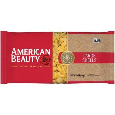 American Beauty Large Shells